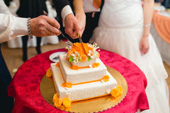 Newlyweds cutting the wedding cake Royalty Free Stock Image