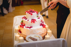 Newlyweds cutting the wedding cake Royalty Free Stock Photo