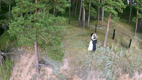 Newlyweds dancing in the coniferous forest in front of camera stock footage