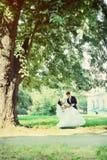 Newlyweds dancing, tinted Stock Photos