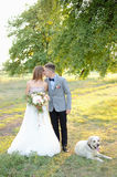 Newlyweds and dog Royalty Free Stock Images