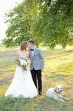 Newlyweds and dog Royalty Free Stock Images