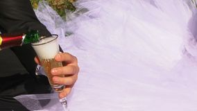 Newlyweds Drink Champagne On The Nature stock video footage