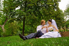Newlyweds drinking wine Stock Image