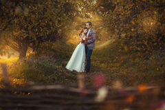 Newlyweds are embracing in the garden Royalty Free Stock Images