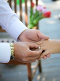 Newlyweds exchange rings, groom puts the ring on the bride's hand Royalty Free Stock Image