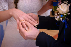 Newlyweds exchange rings. Groom puts the ring on the bride`s hand in marriage registry office Royalty Free Stock Images