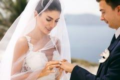 Newlyweds exchanged wedding rings Stock Photography