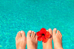 Newlyweds feet by the pool with flower Royalty Free Stock Image