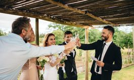 Newlyweds and friends having wedding toast. Guest toasting champagne with wedding couple. Young newlyweds clinking glasses and enjoying the moment with guest at Royalty Free Stock Image