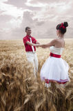 Newlyweds go on the field Royalty Free Stock Photos