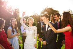 Newlyweds with guest on their garden party Stock Photography