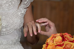 Newlyweds hands Stock Images