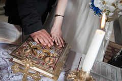 Newlyweds hands Stock Photography