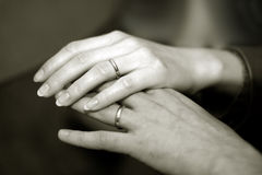 Newlyweds hands Royalty Free Stock Photo