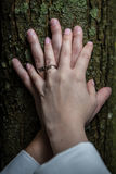 Newlyweds hands with rings Royalty Free Stock Photos