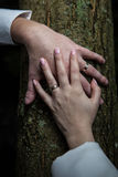 Newlyweds hands with rings Royalty Free Stock Photography