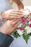 Newlyweds hands stock photos