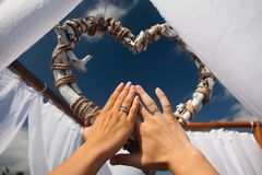 Newlyweds hands with wedding rings Royalty Free Stock Image