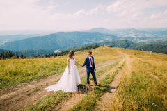 Newlyweds - handsome groom and gorgeous bride walking on trail across yellow sunny field with forest hills as background Royalty Free Stock Image