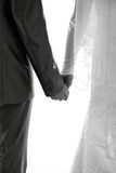 Newlyweds hold each other's hands. Stock Photo