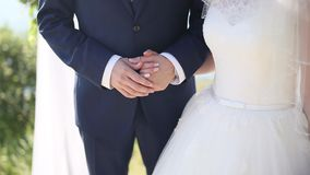 The newlyweds hold hands at the wedding ceremony. Couple holding stock video footage