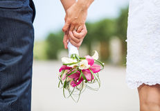 Newlyweds holding hands Royalty Free Stock Image