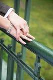 Newlyweds holding hands on the bridge Stock Photography