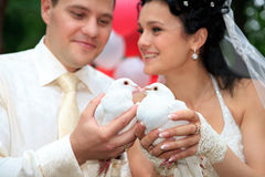 Newlyweds holding white doves Stock Photography
