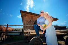 Newlyweds on horse farm Stock Photos