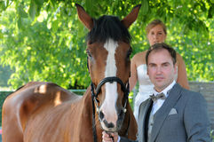 Newlyweds with horse Stock Images