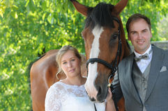 Newlyweds with horse Royalty Free Stock Photography
