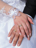 newlyweds Impegno, felicità ed amore Fotografia Stock