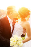Newlyweds kiss on nature Stock Photography