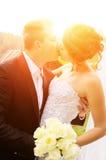 Newlyweds kiss on nature Stock Photography