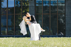 Newlyweds kiss under a veil on background willow Stock Photo