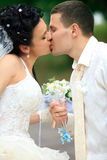 Newlyweds  kissing Royalty Free Stock Photo