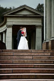 Newlyweds kissing Stock Images