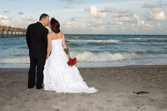 Newlyweds Kissing Stock Photography