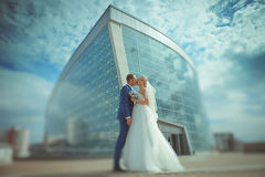 Newlyweds kissing. Attractive couple portraits. . Wedding Day stock images