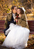 Newlyweds kissing on bench at autumn park under woolen plaid Stock Photography