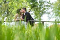 Newlyweds kissing on wooden bridge Stock Image
