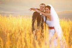Newlyweds look hopeful posing on the field Stock Photography