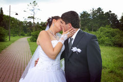 Newlyweds in love Royalty Free Stock Images