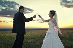 Newlyweds making a toast at dawn Royalty Free Stock Photos