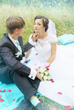 Newlyweds in a meadow,tinted Stock Photography