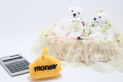 Newlyweds, money and calculator on white background. Stock Photography