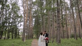 Newlyweds outdoors in the summer park on the background of pines stock footage