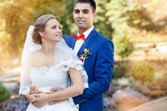 Newlyweds outdoors. Sunny day. Stock Images