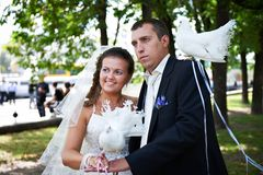 Newlyweds with pigeons Royalty Free Stock Image